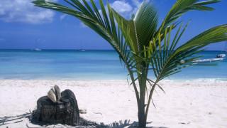 Поездка в Доминикану