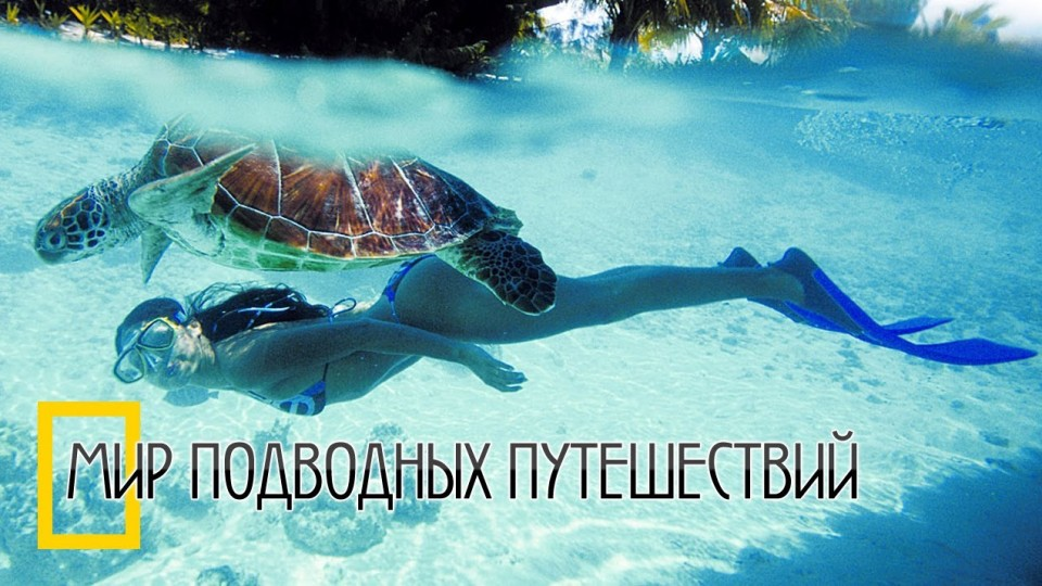 видео: Хочу на Маврикий! (Рай для дайверов)