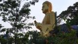 Поездка в Шри Ланку