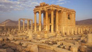 Поездка в Сирию