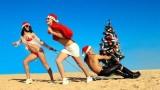 Где встретить Новый год — в Египте или в Арабских Эмиратах