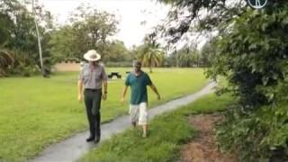 Гуам. В Америку без визы — Путешествия с Андреем Понкратовым
