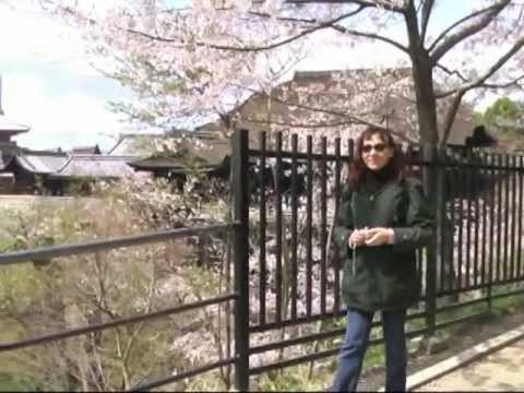 Поездка в Японию — часть 3