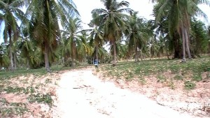 видео: Таиланд   подробности постоянного проживания